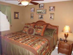 19 GUEST BEDROOM LUTZ, FL